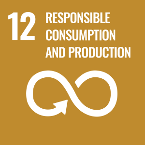 Icon for Sustainable Development Goal 12: Responsible Consumption and Production