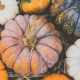 a selection of pumpkins