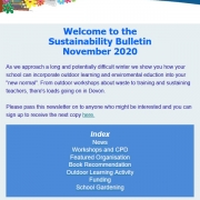 picture of the sustainability bulletin november 2020 edition