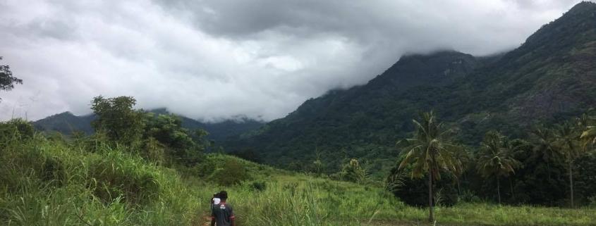 the countryside around a Tanzanian village