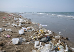Picture of lots of plastic litter along a beach